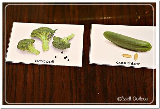 plantcards