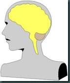 concussion-women