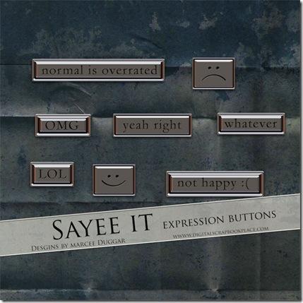 08_E_SayeeIt