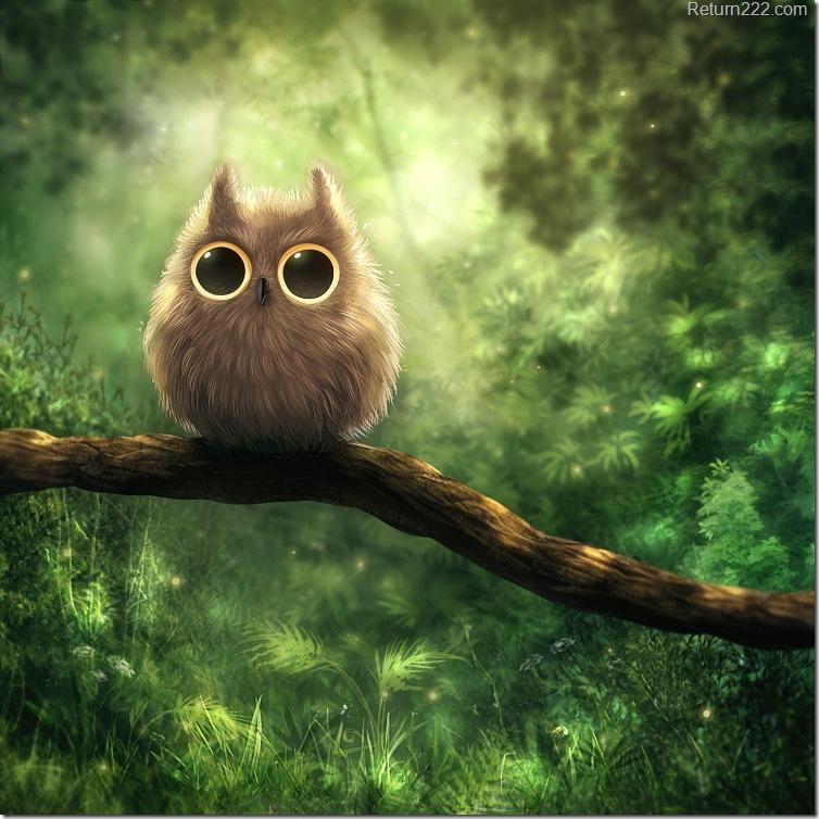 owl_by_kikariz-d2zosgx