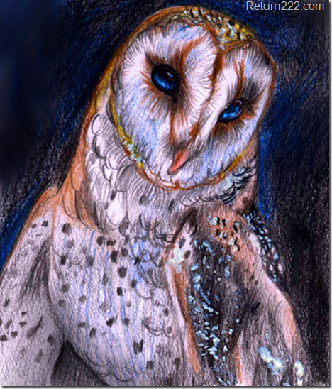 magic_owl_by_themysticwolf-d3aa6e7
