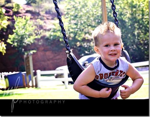 Owen swing for web