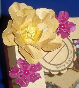 FlowerGroup_Closeup