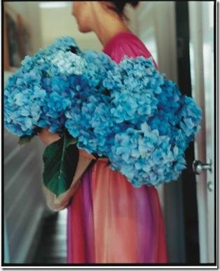 shannon fricke Blue Flowers