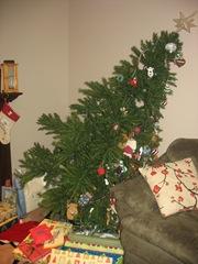 Christmas Season 2010 005