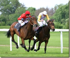 Horse-racing-4