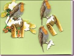 3D Birdies2