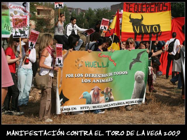 Manifestaciones contra el Toro de la Vega 2009 IMG_2240