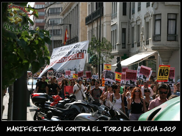 Manifestaciones contra el Toro de la Vega 2009 IMG_2348