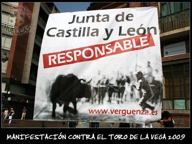 Manifestaciones contra el Toro de la Vega 2009 IMG_2305