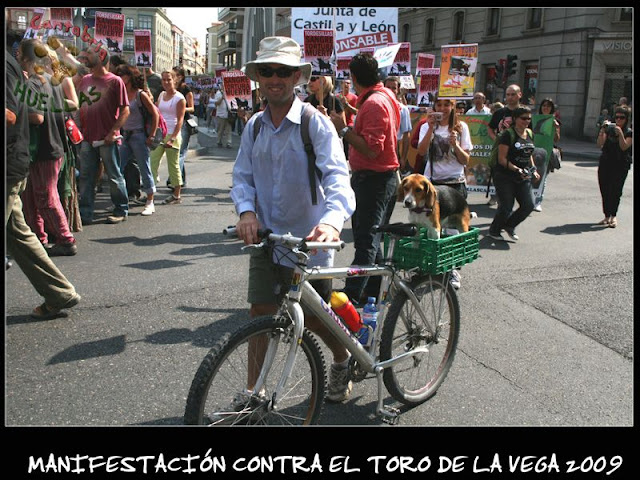 Manifestaciones contra el Toro de la Vega 2009 IMG_2331