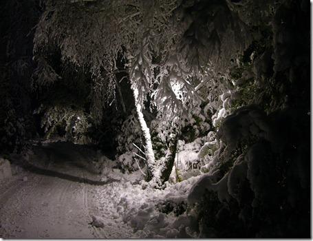 Snö 2009 013