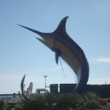 Kota Kinabalu Town - Swordfish at the Roundabout.