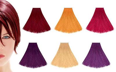 ヘナとはインドのアーユル・ヴェーダ発祥の染毛効果のある薬草