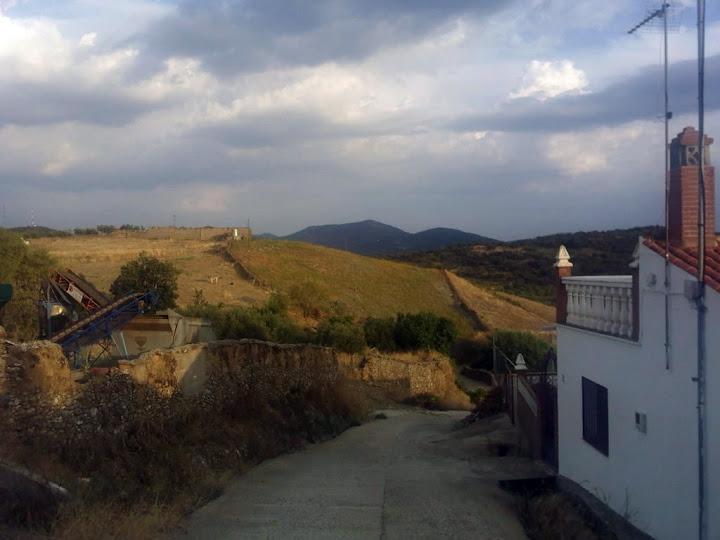 Campo verdeando en pleno Agosto, Reina (Badajoz-2010)