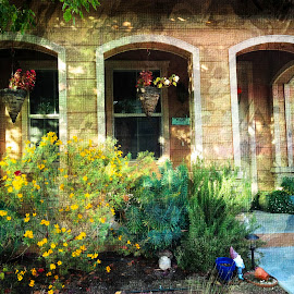 porches by Leslie Hunziker - Instagram & Mobile iPhone ( houses, plants, gardens, flowers, porch,  )