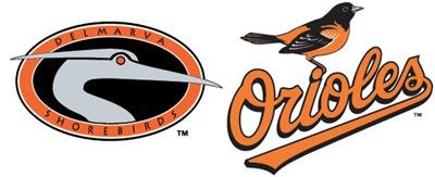 shorebirds logo