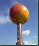 alabama peach tower