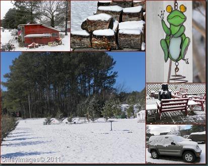 2yard snow collage021011