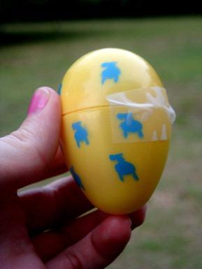 egg hunt pictures-9