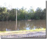 2011 Flood by Rt 13 near Murphysboro