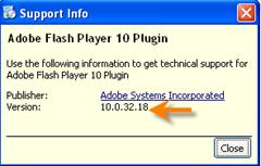 flash palyer version info