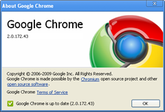 Google Chrome 2.0.172.43 version