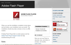 flash player installed