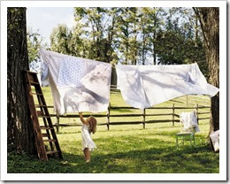 CLOTHESLINE1 country living