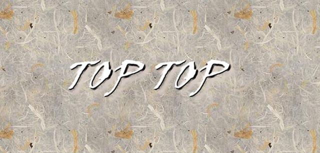 [TOPTOP3.jpg]