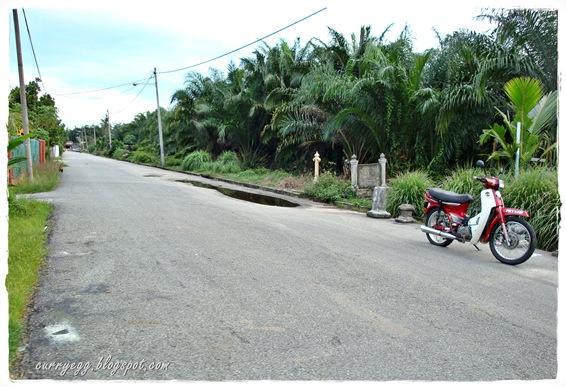 kampung11