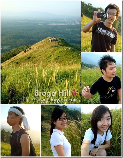 broga5