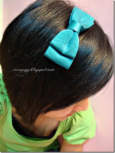 hairclip1