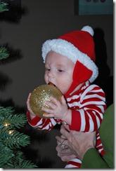December 2010 045