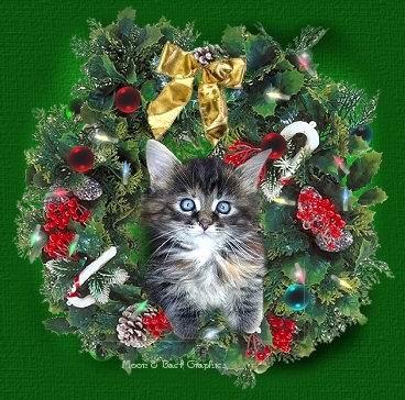 postal de navidad cosasdivertidasdenavidad.blogspot (112)