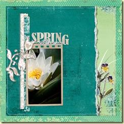 2009-5-27-Mad-Spring-blossom