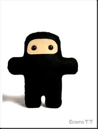 79485-1-ninja