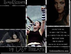 Evanescenceevanescence_1LinkinSoldiers [Original Resolution]