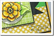 card_1383_closeup
