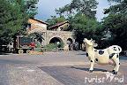 Фото 6 Naturland Country Resort ex. Vera Country Club