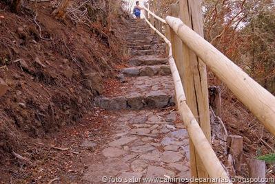 1377 Camin de la Laurisilva