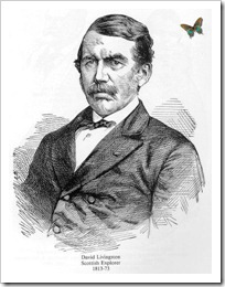 Livingstone