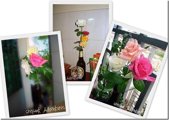 roses in bottles2