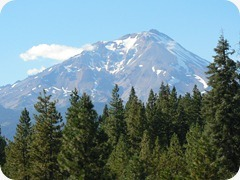 23-Mt-Shasta_thumb4