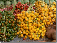 fruto-pupunha-4