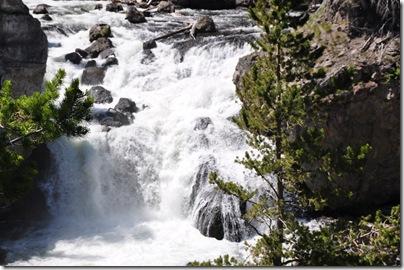 Yellowstone 2009 018