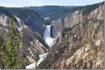 Yellowstone 2009 032
