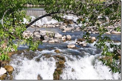 Yellowstone 2009 030