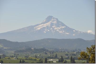 Mt Hood 068