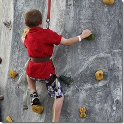 rock wall wnt3